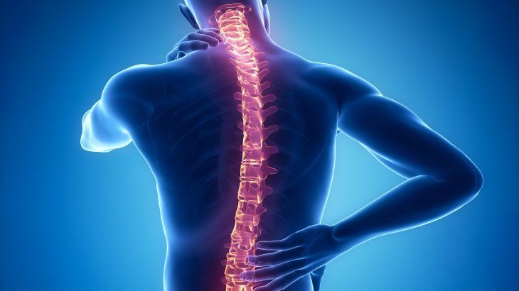 Motor Collisions the Most Common Cause of Spinal Injuries